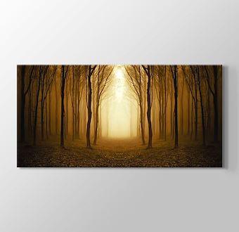 Altın Orman