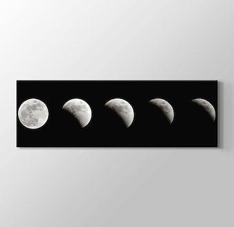 Ay Tutulması