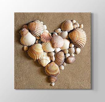Heart Shaped Sea Shells