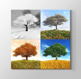 Four Seasons II