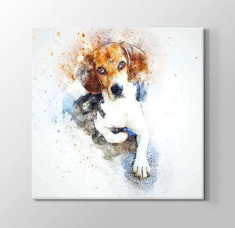 Çizgisel Seri - Köpek