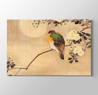 Japanese Silk Painting of a Wood Pigeon