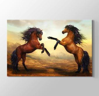 Şaha Kalkmış Kahverengi Atlar