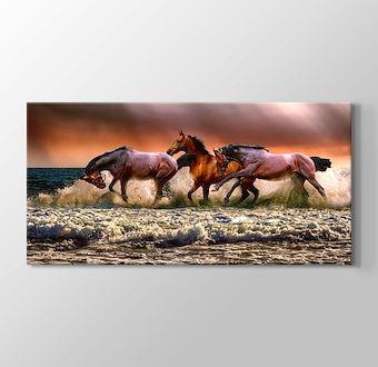 Denizde Koşan Atlar