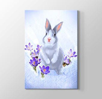Mor Çiçekler Arasındaki Tavşan