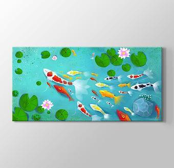 Göldeki Japon Balıkları