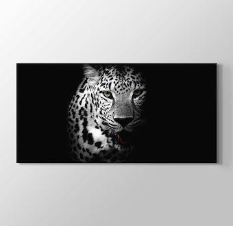Leopar - Siyah Beyaz
