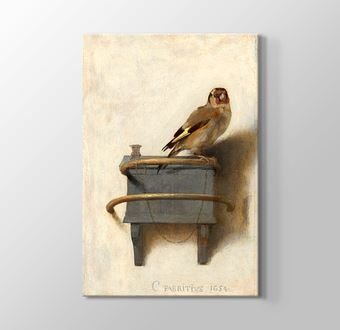 The Goldfinch - Altın İspinoz